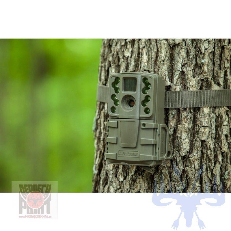 moultrie wild berwachungskamera a 20 125 99. Black Bedroom Furniture Sets. Home Design Ideas